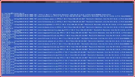 Master Class - NGINX WebServer and Custom Load Balancer