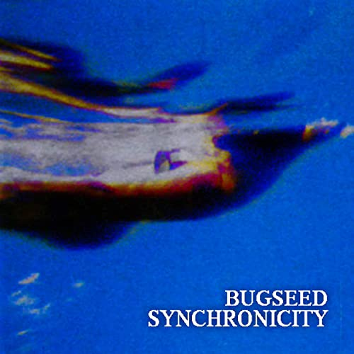 Bugseed - Synchronicty (2021)