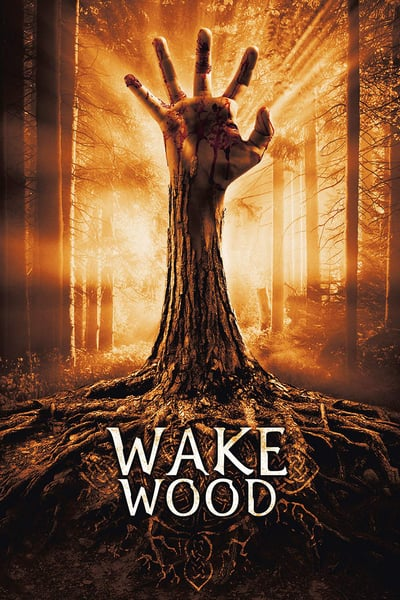 Wake Wood 2009 1080p BluRay x265-RARBG