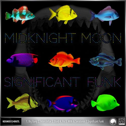 Midknight MooN — Significant Funk (2021)