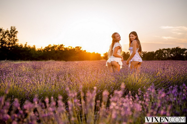 Naomi Swann, Talia Mint ~ Our Secret Place ~ Vixen ~ FullHD 1080p