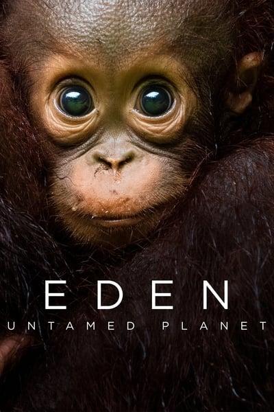 Eden Untamed Planet S01E02 1080p HEVC x265-MeGusta