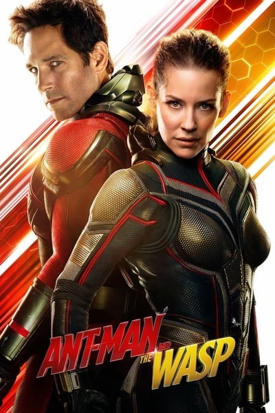 Ant-Man and the Wasp 2018 BluRay 1080p DTS AC3 x264-3Li